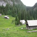 Bohinjske planine